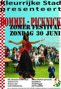Dommelpicknick 2013 Flyer