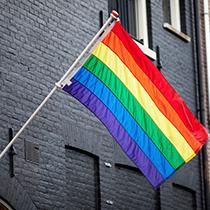 180315 LHBT-vlag